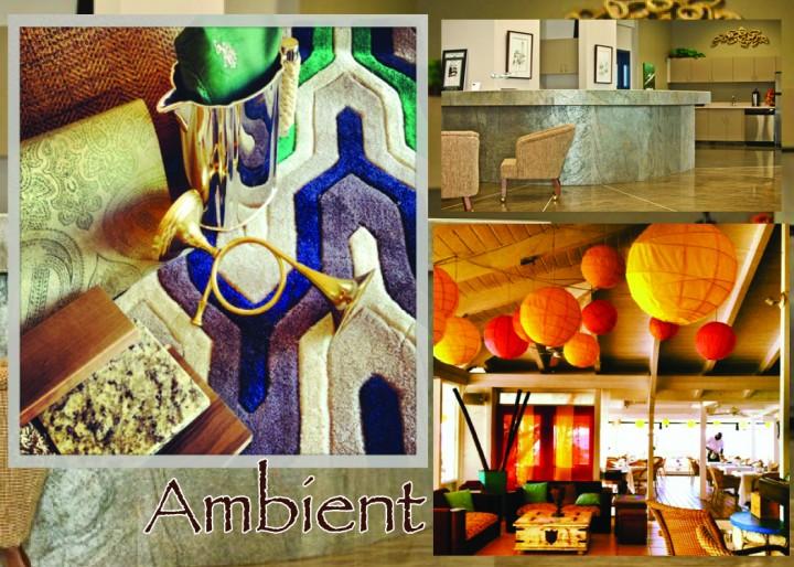 Ana Interiors Ambient